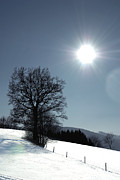 Styria Photos - Glance by Antonio Castillo