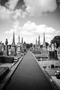 Martina Fagan - Glasnevin Cemetery
