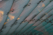Bill Mock Metal Prints - Glass Canopy Edinburgh Metal Print by Bill Mock