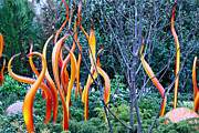 Cheryl Young Metal Prints - Glass Garden 7 Metal Print by Cheryl Young