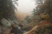 Autumn Foliage Photos - Glen Ellis Falls Lip Autumn Mist by John Burk