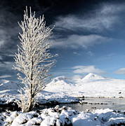 Snow-covered Landscape Framed Prints - Glencoe winter landscape Framed Print by Grant Glendinning
