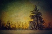 Winter Prints Prints - Glistening Sunrise Print by Kathy Jennings