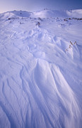 Snow Drifts Photos - Gloaming in the Snow by Morris  McClung