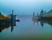 Nick Zelinsky - Gloomy Morning