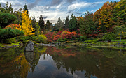Japanese Garden Photos - Glorious Fall Gardens by Mike Reid