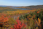Acadia National Park - Glorious New England Fall Foliage Colors by Juergen Roth