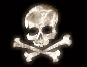 Cindy Nunn - Glow Skull