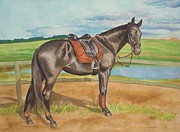 Stallone Paintings - Glow Sport Horse   Warmblood Mare by Dorota Zdunska