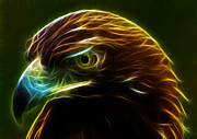 Eagle Mixed Media - Glowing Gold by Shane Bechler