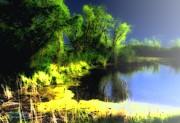 Glowing Pond On A Foggy Night Print by Ann Almquist