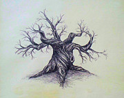 Austin Drawings - Gnarled Tree by Troy Caperton