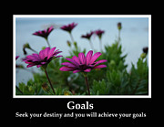 Motivational Photos - Goals Inspirational Print by Heather Allen