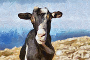 Rhodes Originals - Goat Grazing On A Rock Against The Sea by Serhii Odarchenko