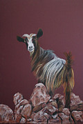 Goat Painting Originals - Goat by Kurian Joshi