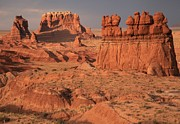 Goblin Valley State Park Prints - Goblin Valley Landscape Print by Adam Jewell