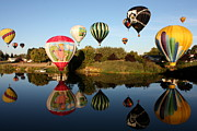 Prosser Balloon Rally Prints - Going for a Dip Print by Carol Groenen
