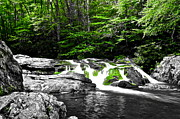 Frozen in Time Fine Art Photography - Going Green for the Environment