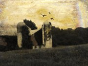 Barn Digital Art Metal Prints - Going Somewhere Metal Print by Gothicolors With Crows