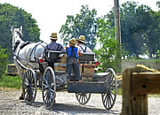 Amish Community Prints - Going To Market Print by Paul Mashburn