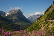 Natural Focal Point Photography - Going to the Sun Road