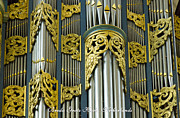 Organ Prints - Gold and Green organ Print by Jenny Setchell