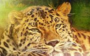 Animal Themes Painting Prints - Gold leopard portrait Print by Odon Czintos
