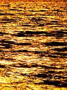 Ramona Johnston - Gold Sea