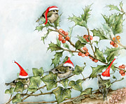 Botanic Drawings - Goldcrests On Holly Tree  by Marina Durante