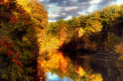 Fall In New England Metal Prints - Golden Autumn Metal Print by Joann Vitali