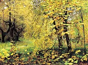 Turning Leaves Prints - Golden  Autumn Print by Pg Reproductions