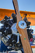 Airplane Engine Photos - GOLDEN BIPLANE ENGINE and PROPELLER by Daniel Hagerman