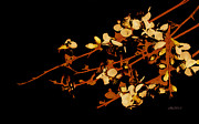 Stylized Digital Art Prints - Golden Blossoms  Print by Ann Powell