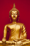 Greg Vaughn - Golden Buddha