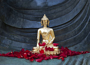 Spirituality Metal Prints - Golden Buddha Metal Print by Tim Gainey