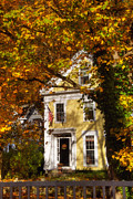 Autumn Scenes Metal Prints - Golden Colonial Metal Print by Joann Vitali
