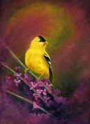Red Finch Originals - Golden Dawn by Bonnie Fernandez