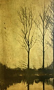 Trees Reflecting In Water Mixed Media Metal Prints - Golden Metal Print by Deborah Talbot - Kostisin
