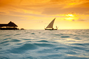 Ocean Panorama Prints - Golden Dhoni Sunset Print by Sean Davey