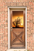 Picture Window Frame Photos Art - Golden Doorway Window View by James Bo Insogna