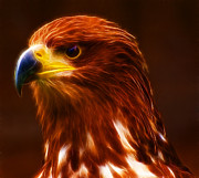 Strength Photo Posters - Golden Eagle Eye Fractalius Poster by Chris Thaxter