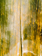 Snow Abstract Prints - Golden Falls  Print by Bill Gallagher