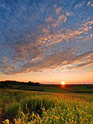 Sunset Sky Photos - Golden fields by Davorin Mance