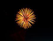 Golden Fireworks Flower Print by Robert Bales