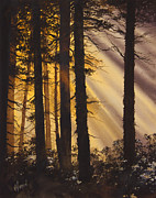 Landscape Greeting Card Painting Originals - Golden Forest Light by James Williamson