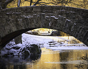 Gapstow Bridge Framed Prints - Golden Gapstow Framed Print by Vicki Jauron