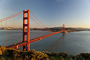 Urban Buildings Prints - Golden Gate Bridge Print by Francesco Emanuele Carucci