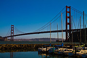Tom Hard - Golden Gate Bridge