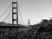 Black And White Art - Golden Gate Monochrome  by Joshua Eiermann