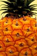 Golden Hawaiian Pineapple Print by James Temple